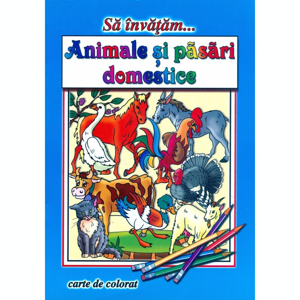 Sa Invatam Animale Si Pasari Domestice Carte De Colorat