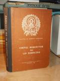 DUMITRU STANILOAE - CHIPUL NEMURITOR AL LUI DUMNEZEU - CRAIOVA , 1987
