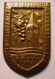 I.755 INSIGNA GERMANIA POMPIERI KREISVERBANDSTAG NIEDERDOLLENDORF 1965 h47mm