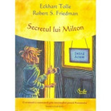 Secretul lui Milton, curtea veche