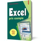 Excel prin exemple, polirom