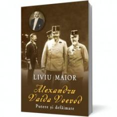 Alexandru Vaida Voievod. Putere şi defăimare