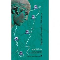 AnaBASis (ebook)