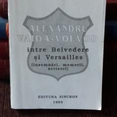 ALEXANDRU VAIDA VOIEVOD INTRE BELVEDERE SI VERSAILLES - LIVIU MAIOR