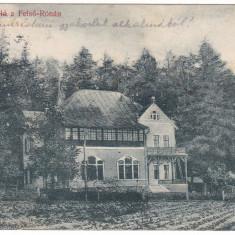 #2215- Romania Felso Rona, Rona de Sus carte postala circulata 1911: Hotel Roza, Fotografie