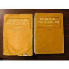 "PVM - I. MORARU ""Anatomie Patologica"" Volumele I + II"