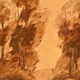 Stefan Popescu , acte de licitatie , bait si laviu cu batul, Peisaje, Cerneala, Altul