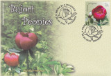 ROMANIA 2011  LP 1894  BUJORI  FDC, Stampilat