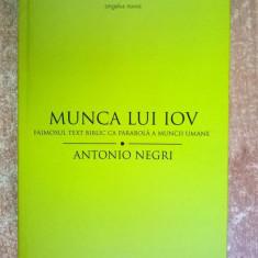 Antonio Negri - Munca lui Iov