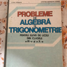 Probleme de algebra si trigonometrie clasele IX-X Liviu Parsan
