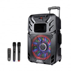 Sistem Karaoke portabil ZEPHYR ZP 9999 A15, 15 țoli, Baterie incorporată, Bluetooth, 2 microfoane fără fir