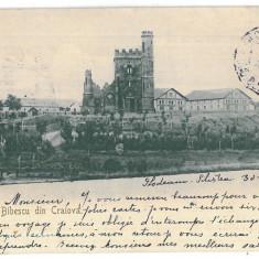 2234 - CRAIOVA, Bibescu Park, Romania - old postcard - used - 1904, Circulata, Printata