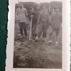 BF - 103 - FOTOGRAFIE FOARTE VECHE - MILITARI - ANII 1940