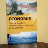 Economie-Ghid de pregatire Bacalauret 2019, Fl. Pană, G. Hacman, Ed. Nomina