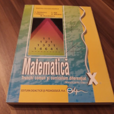 MATEMATICA TRUNCHI COMUN SI CURRICULUM DIFERENTIAT MANUAL CLASA X 2017