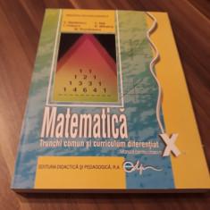 MATEMATICA TRUNCHI COMUN SI CURRICULUM DIFERENTIAT MANUAL CLASA X 2017, Clasa 10