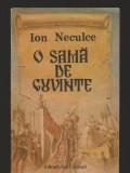 (C8170) O SAMA DE CUVINTE DE ION NECULCE