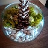 Decorațiune Crăciun din licheni