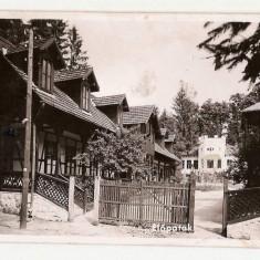 Valcele/ Elopatak 1943
