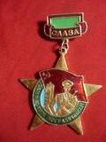 Insigna Militara Slava Granicerilor URSS ,metal si email ,h=6cm