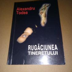 CARDINAL ALEXANDRU TODEA - RUGACIUNEA TINERETULUI (ED. III REVIZUITA, BLAJ 2001)