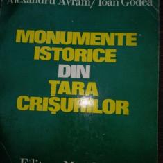 MONUMENTE ISTORICE DIN TARA CRISURILOR - ALEXANDRU AVRAM, IOAN GODEA