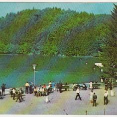 Bnk cp Sovata - Lacul Ursu - circulata - marca fixa, Printata