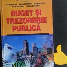 Buget si trezorerie publica Tatiana Mosteanu Mariana Vuta Ed II revazuta 2004