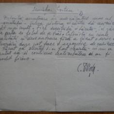 Text olograf al pictorului Constantin Piliuta despre pictorita Luminita Costea