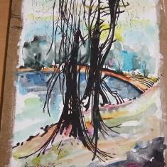 Tablou fara rama pictat de pictorul Brailean EUGEN BOERICA,Tp.GRATUIT, Arbori, Acuarela, Realism