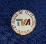 Insigna TV Arad - Media - Telecomunicatii