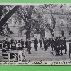 Timisoara Temeswar   Institutul, Circulata, Printata