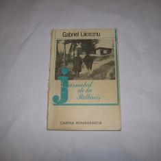 JURNALUL DE LA PALTINIS GABRIEL LIICEANU