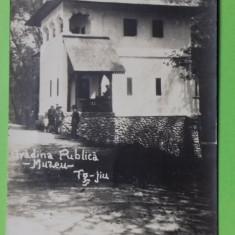 Gorj Targu Jiu Gradina Publica  Muzeul, Necirculata, Printata