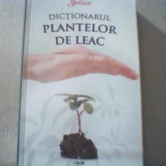 DICTIONARUL PLANTELOR DE LEAC { 2008 }, Alta editura