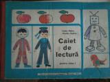 Cumpara ieftin Cella Aldea, Viniciu Gafita-Caiet de lectura pentru clasa I