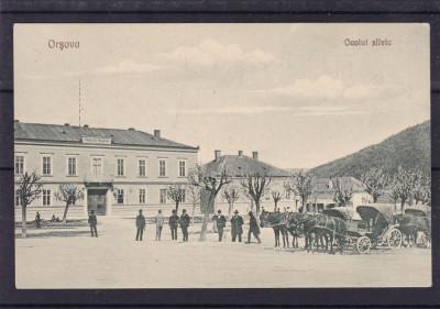 ORSOVA   OCOLUL  SILVIC  TRASURI  EDITURA  LIBRARIA LUMINA foto