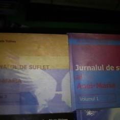 ANA MARIA VOINEA-JURNAL DE SUFLET-1=159 PG- 3=357 PG- 4=392 PG- 6=141 PG-
