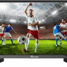 Televizor SKY LED Master 22SF2500 56cm Full HD Black