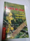 PLANTE DE LEAC PENTRU TAMADUIREA SUFLETULUI - DORIN DRAGOS, MIRELA M. BRATU, A. CICORTAS