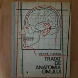 Anatomie - Viorel Ranga