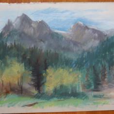 Lucia Cosmescu , Peisaj montan , creioane colorate , semnata