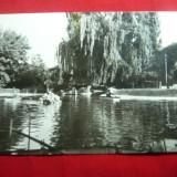 Ilustrata Roman - Vedere din Parc  - anii '70, Necirculata, Fotografie
