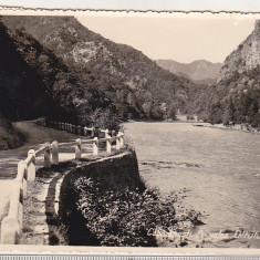 Bnk cp Calimanesti - Pe valea Oltului - circulata 1939, Fotografie