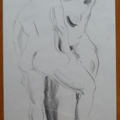 Lili Pancu , Nud , carbune , semnat