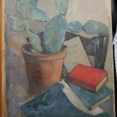 Natura statica , Lili Pancu , ulei / carton, Realism