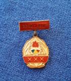 Insigna Pionieri - 1949 - 1979 - aniversara - pionier