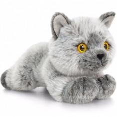 Pisica de plus British Shorthair 30 cm