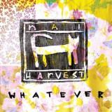 Nai Harvest - Whatever ( 1 VINYL )