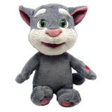 Tom si prietenii vorbareti, new_Tom, Dragon-I Toys